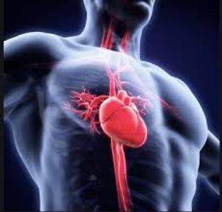 Imagen Destacada - Endocarditis Infecciosa. Profilaxis