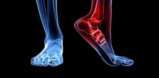 Imagen Destacada - Exploración osteomuscular. TALLERES 1ARIA