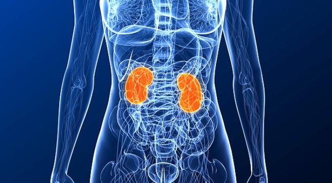 Imagen Destacada - Enoxaparina e insuficiencia renal