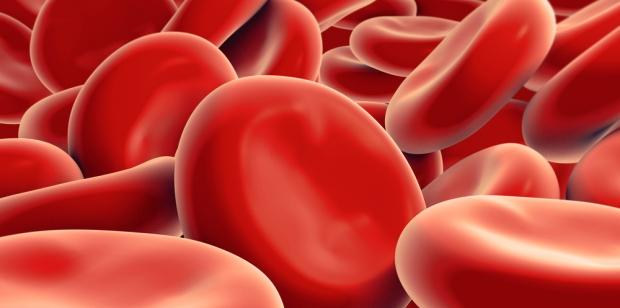 Imagen Destacada - Evaluación del riesgo de hemorragia en paciente con fibrilación auricular HAS-BLED
